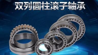 双列圆柱滚子轴承 NN3006、NN3006K、W33、P5、P4 旧型号D3182106、C3182106
